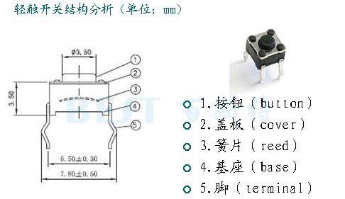 深圳百斯特生产轻触开关的组成和型号